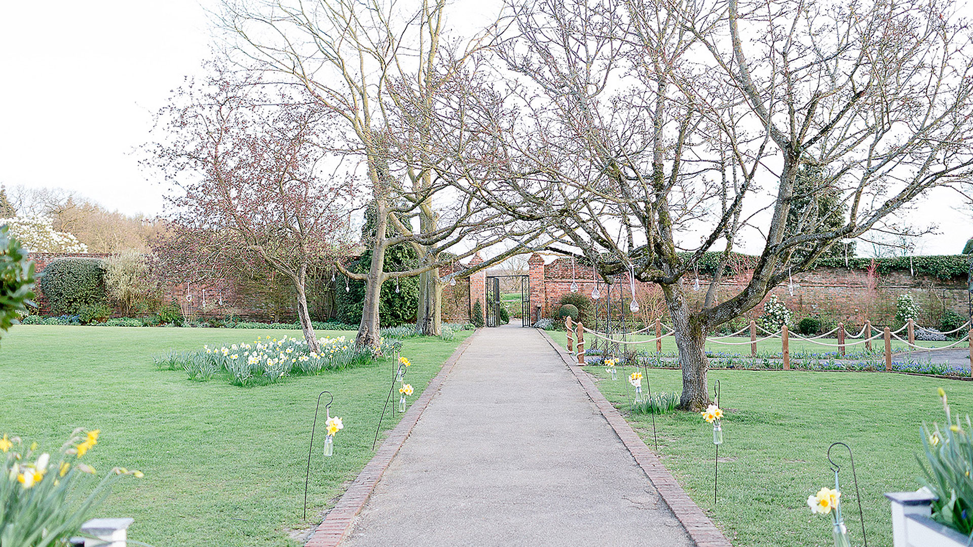 In spring pretty daffodils bloom in the Walled Garden making it perfect for wedding pictures - spring wedding