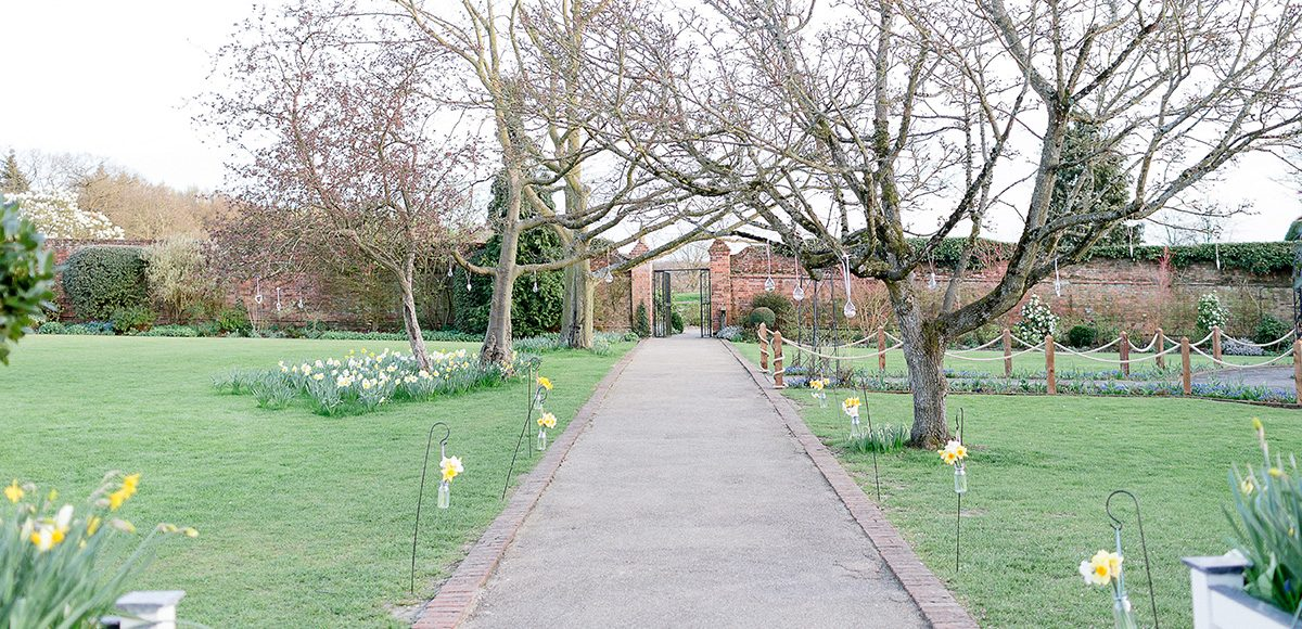 Daffodils line the long wedding aisle in the walled gardens at Gaynes Park for a spring wedding